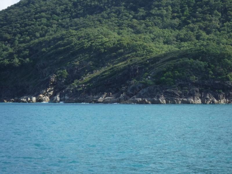 Great Barrier Reef Cairns.2