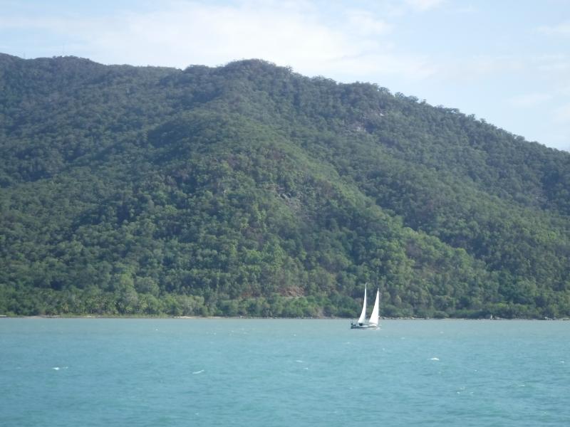 Great Barrier Reef Cairns.3