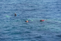Great Barrier Reef Cairns.1